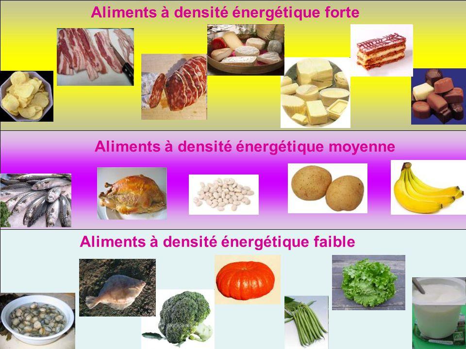 Aliments à densité énergétique forte