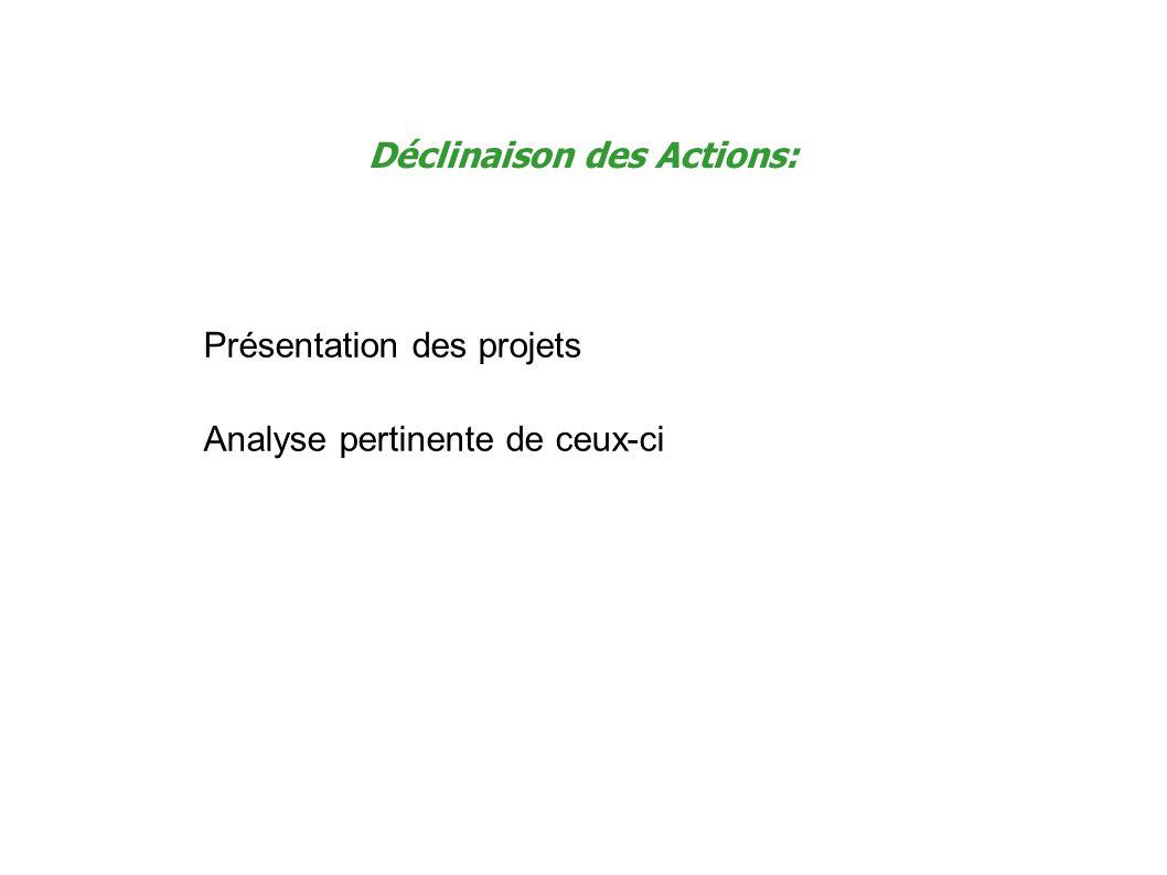Déclinaison des Actions: