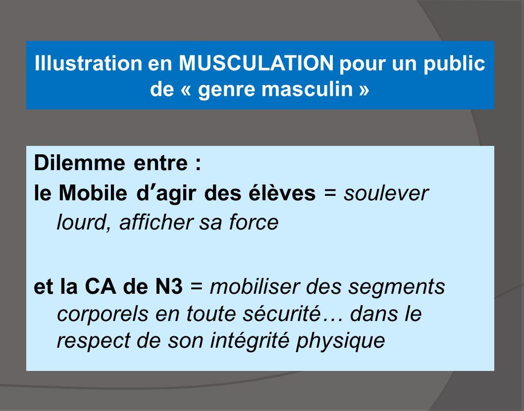 Illustration en MUSCULATION pour un public de « genre masculin »