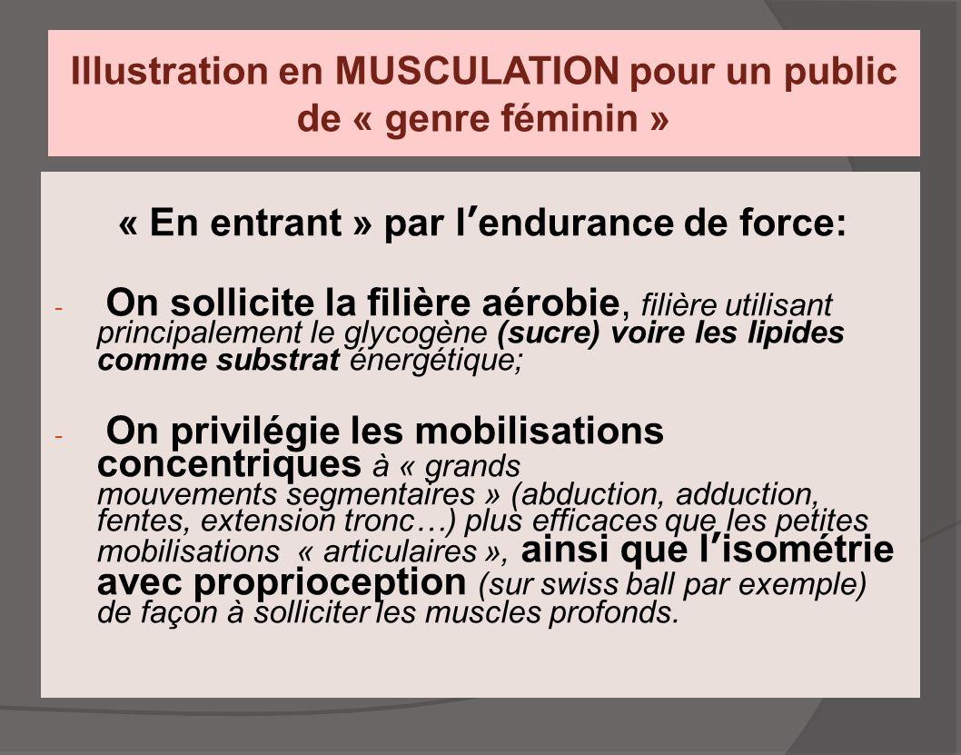 Illustration en MUSCULATION pour un public de « genre féminin »