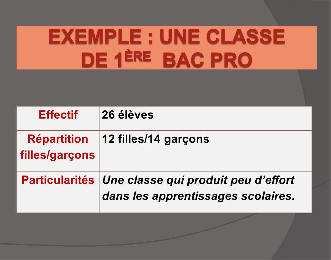 EXEMPLE : UNE CLASSE DE 1ère BAC PRO