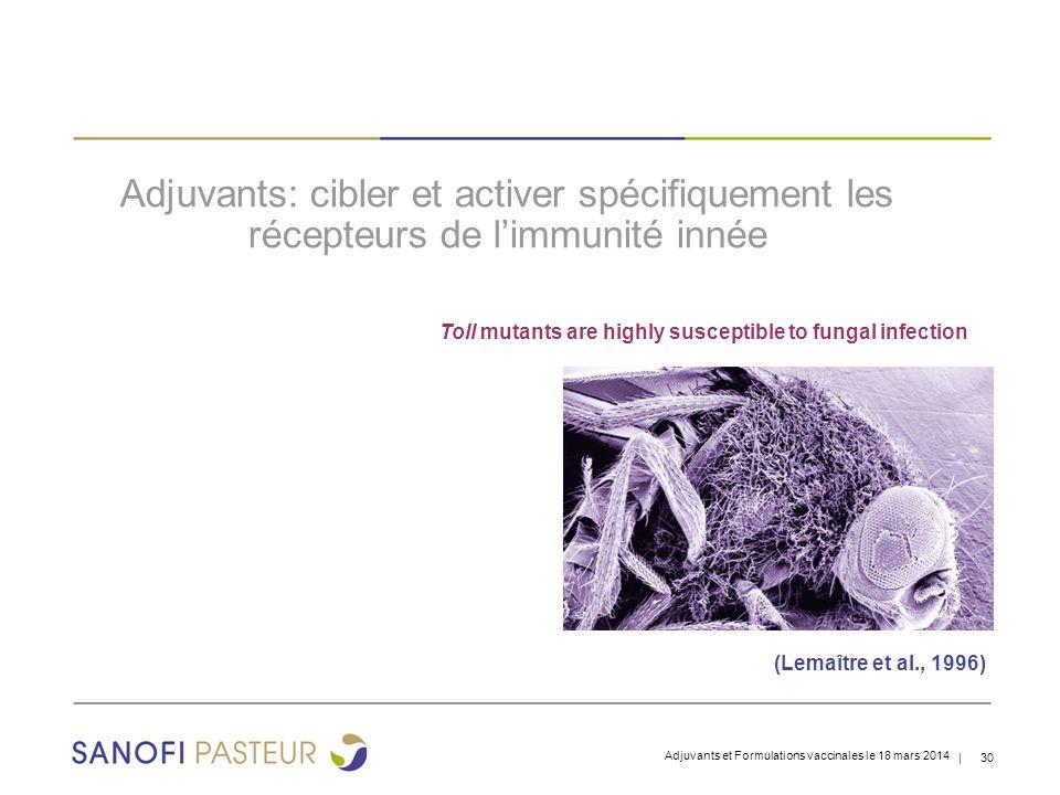 Adjuvants: cibler et activer spécifiquement les récepteurs de l'immunité innée