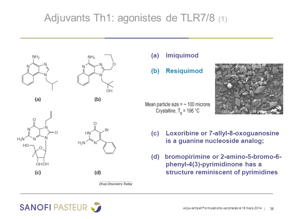 Adjuvants Th1: agonistes de TLR7/8 (1)
