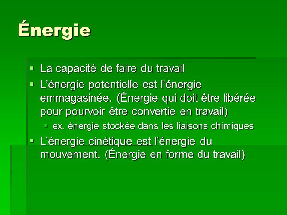 Énergie La capacité de faire du travail