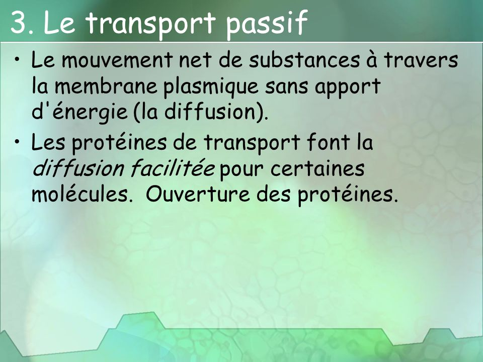 3. Le transport passif Le mouvement net de substances à travers la membrane plasmique sans apport d énergie (la diffusion).