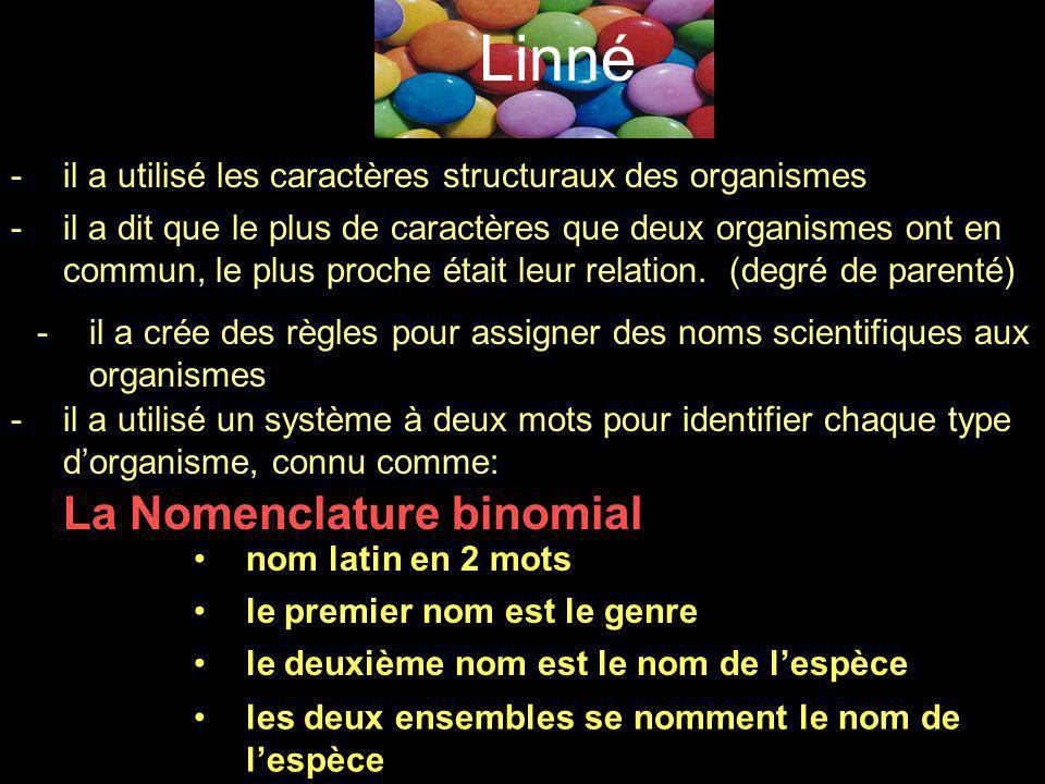 Linné La Nomenclature binomial