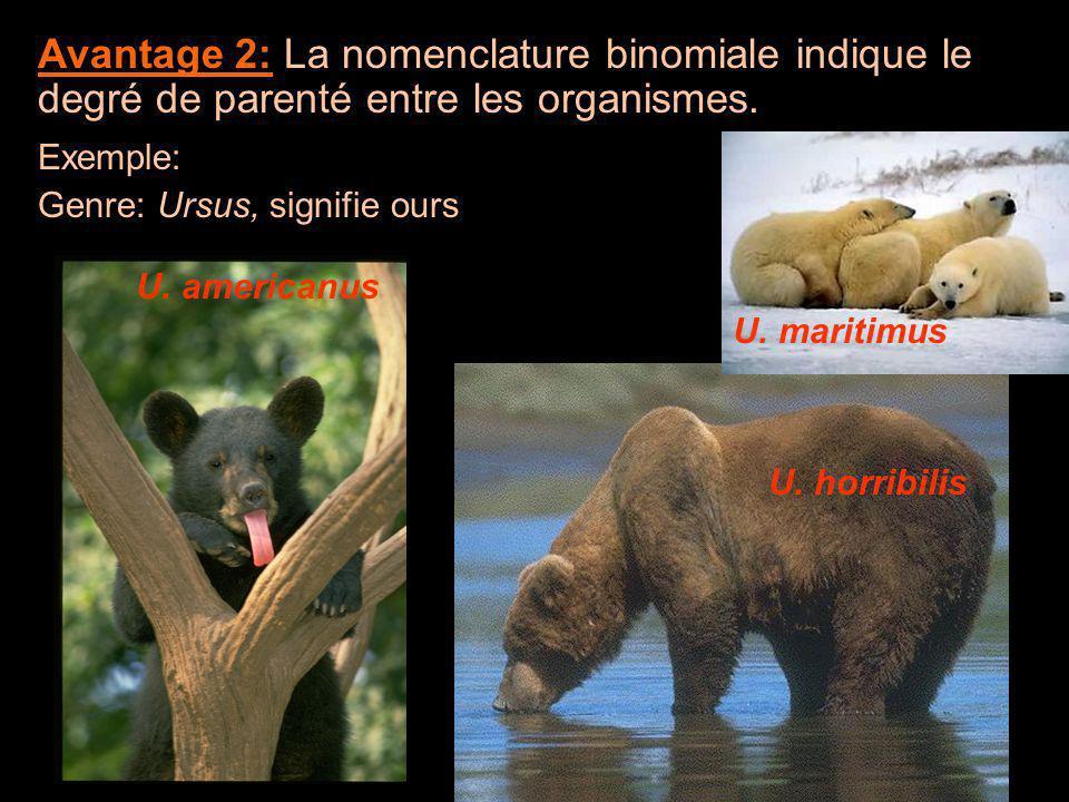 Avantage 2: La nomenclature binomiale indique le degré de parenté entre les organismes.