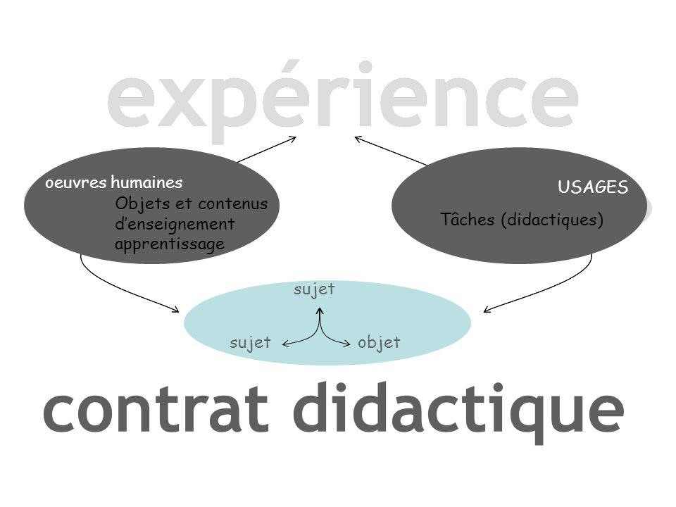 expérience expérience contrat didactique oeuvres humaines USAGES