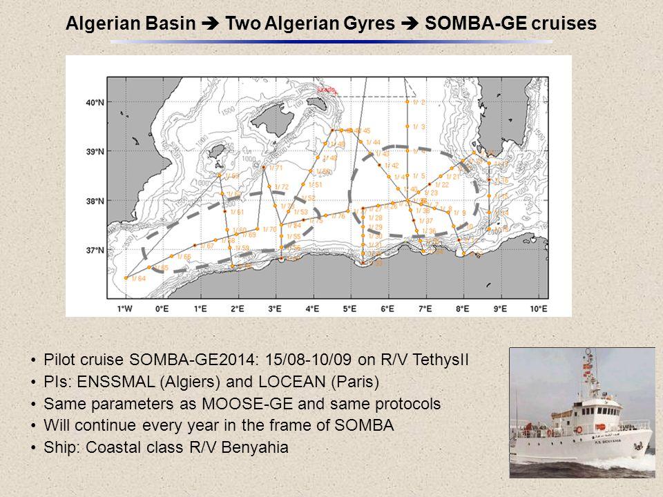 Algerian Basin  Two Algerian Gyres  SOMBA-GE cruises