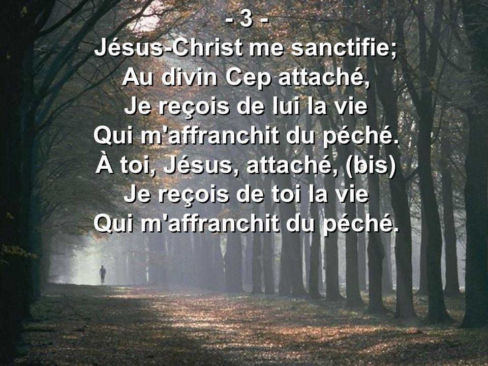 Jésus-Christ me sanctifie; Au divin Cep attaché,