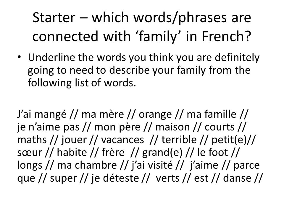 Starter – which words/phrases are connected with 'family' in French