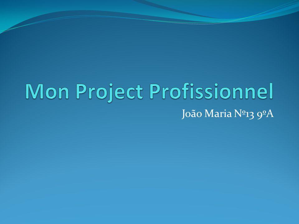 Mon Project Profissionnel