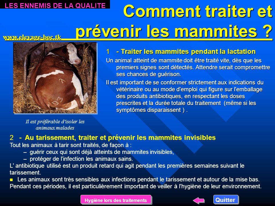 Comment traiter et prévenir les mammites