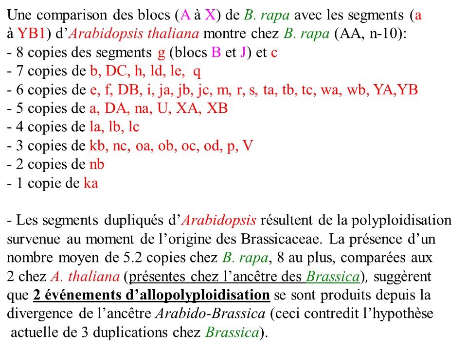 Une comparison des blocs (A à X) de B. rapa avec les segments (a