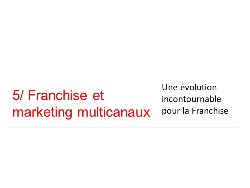 5/ Franchise et marketing multicanaux