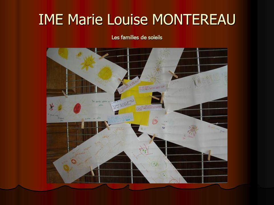 IME Marie Louise MONTEREAU Les familles de soleils