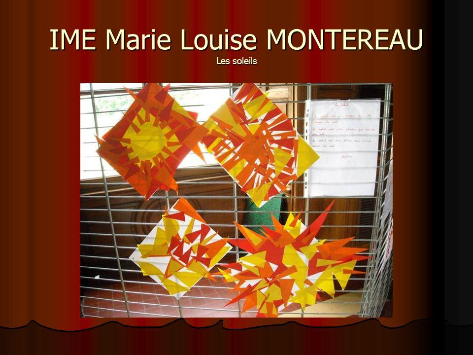 IME Marie Louise MONTEREAU Les soleils