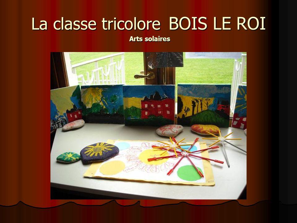 La classe tricolore BOIS LE ROI Arts solaires