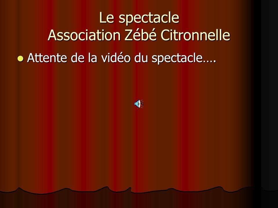 Le spectacle Association Zébé Citronnelle