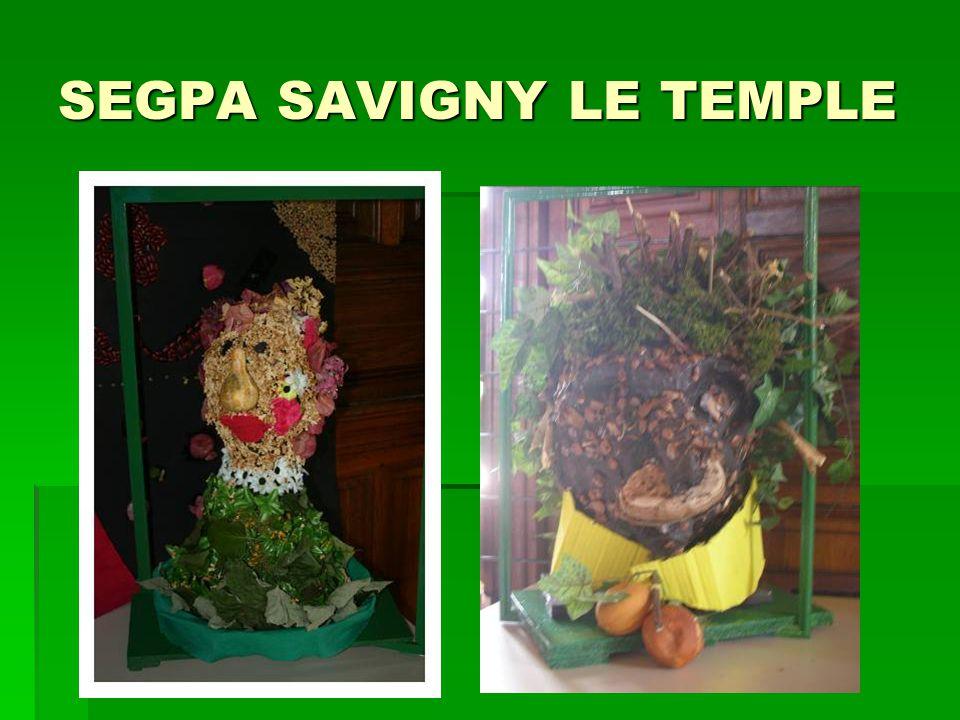 SEGPA SAVIGNY LE TEMPLE