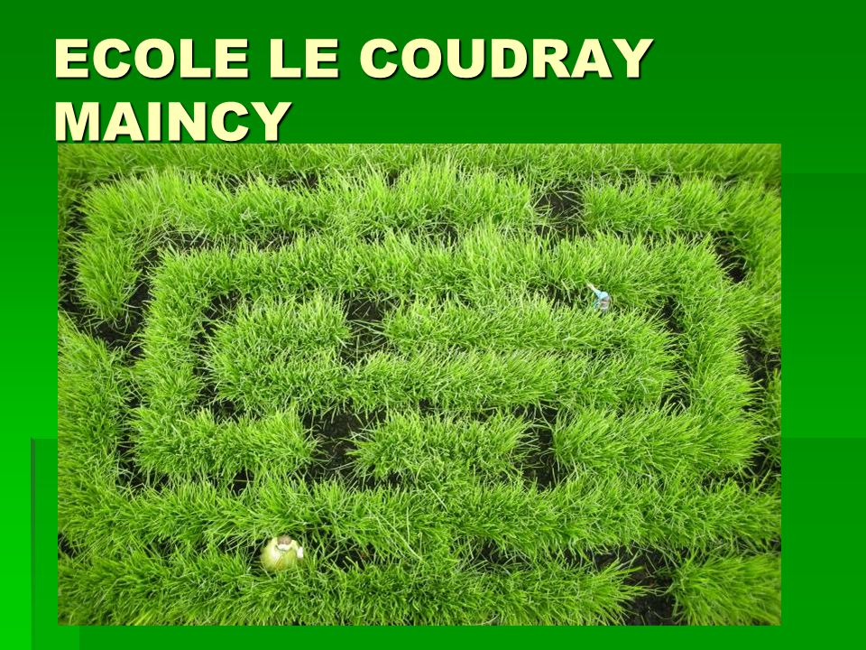 ECOLE LE COUDRAY MAINCY