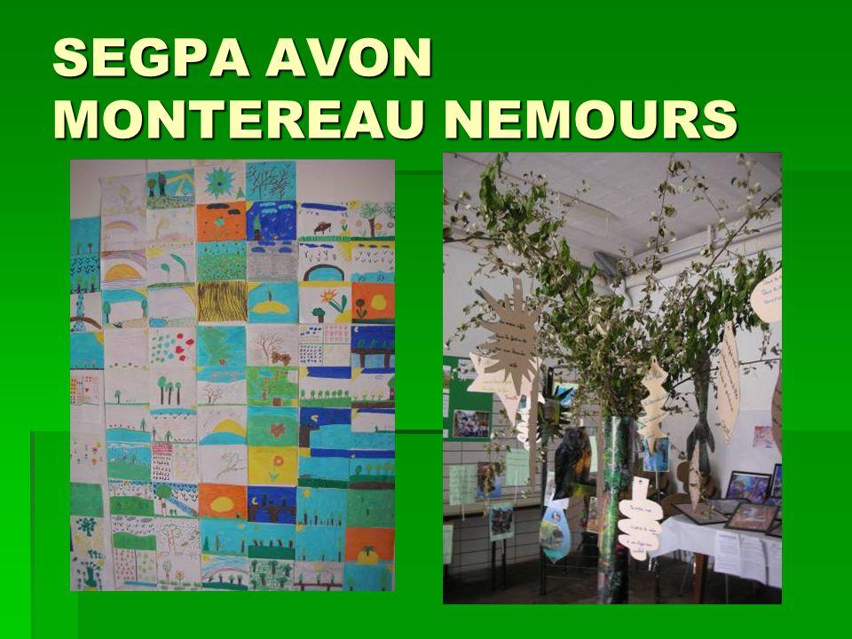 SEGPA AVON MONTEREAU NEMOURS