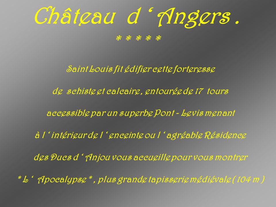 Château d ' Angers . * * * * *