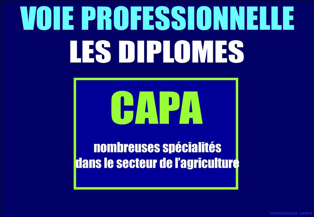 VOIE PROFESSIONNELLE LES DIPLOMES CAPA
