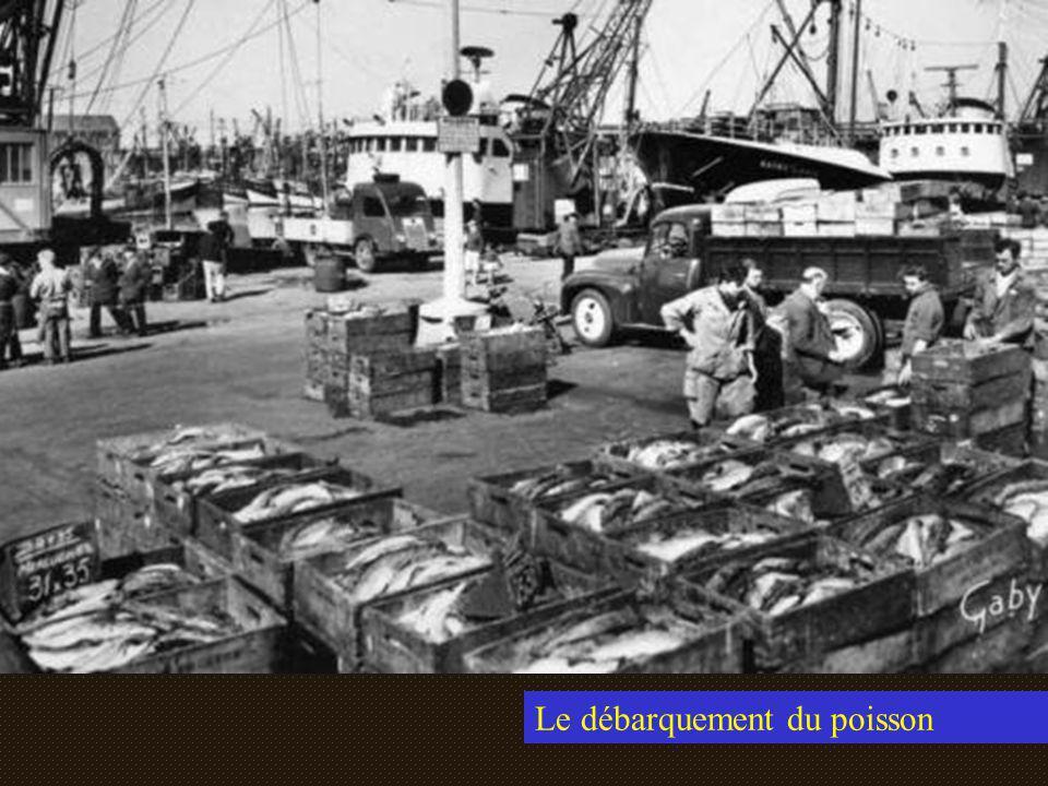 Le débarquement du poisson