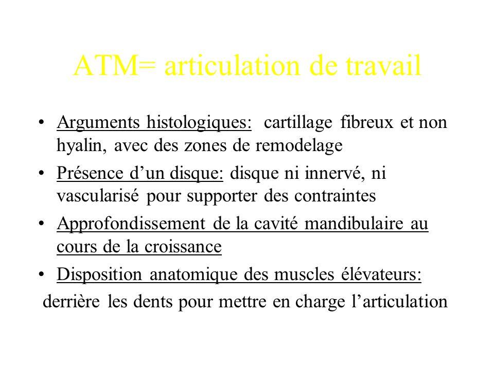 ATM= articulation de travail