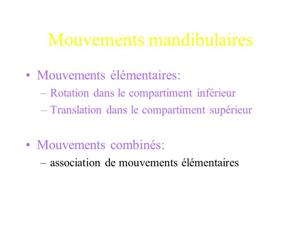 Mouvements mandibulaires