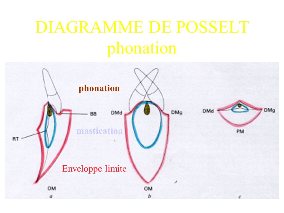 DIAGRAMME DE POSSELT phonation