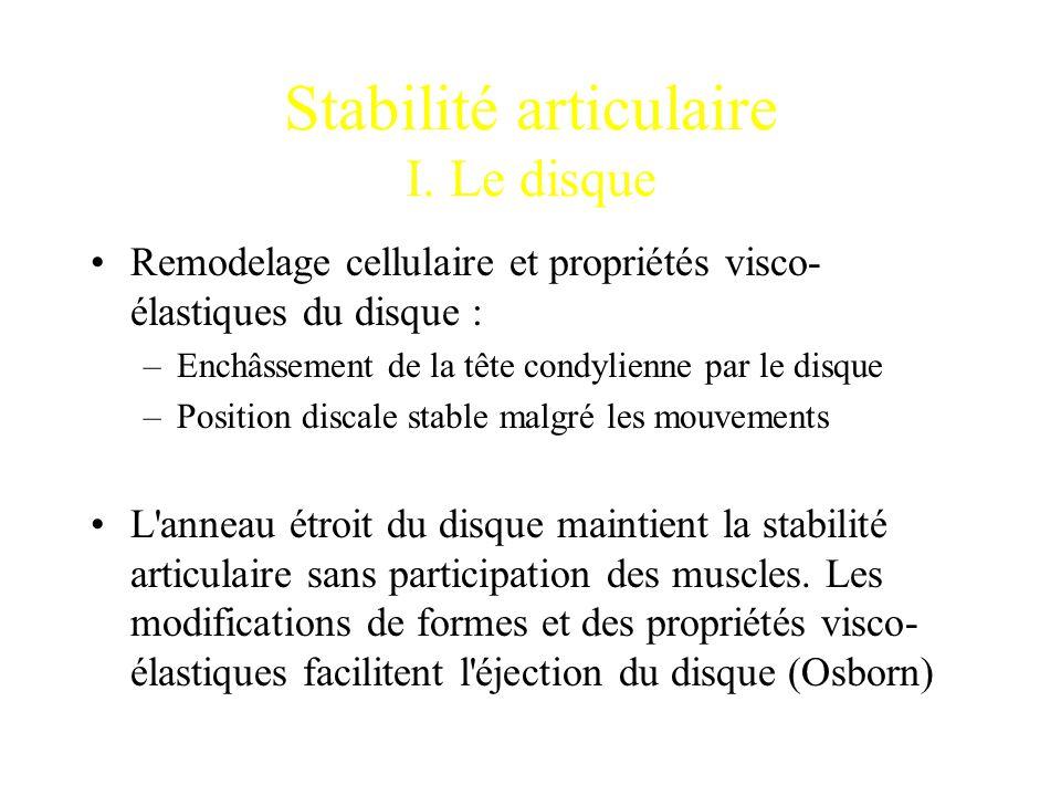 Stabilité articulaire I. Le disque