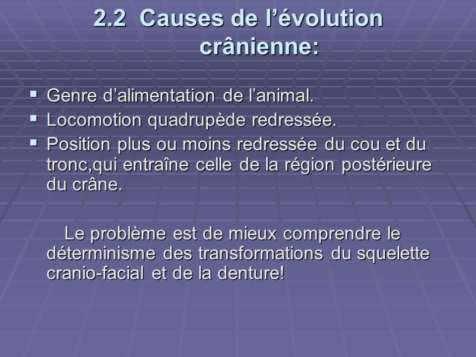 2.2 Causes de l'évolution crânienne: