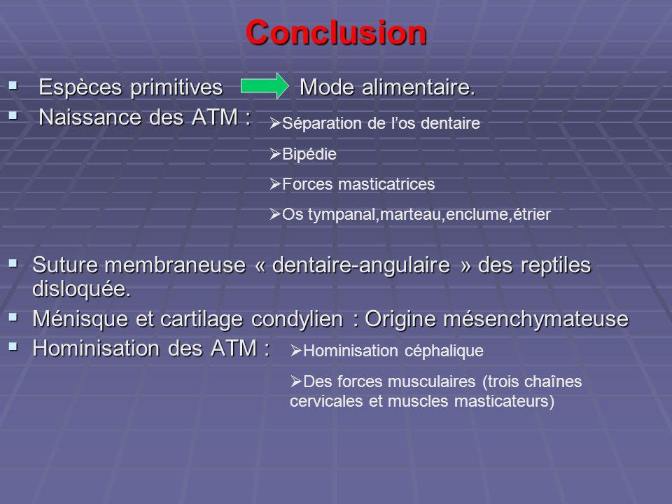 Conclusion Espèces primitives Mode alimentaire. Naissance des ATM :