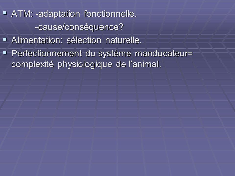 ATM: -adaptation fonctionnelle.
