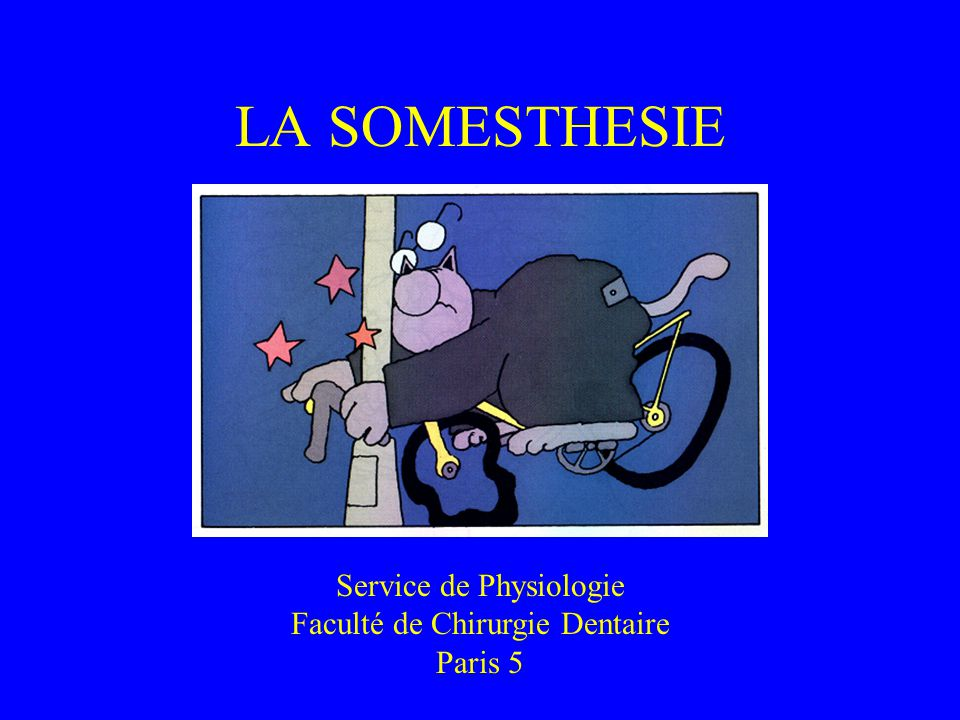 LA SOMESTHESIE Service de Physiologie Faculté de Chirurgie Dentaire