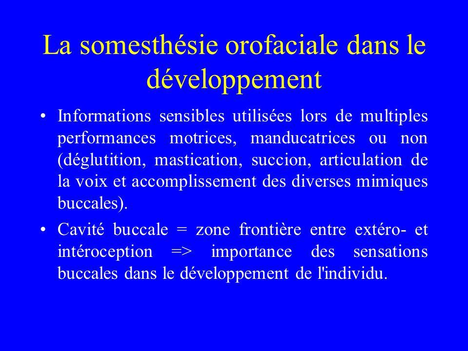 La somesthésie orofaciale dans le développement
