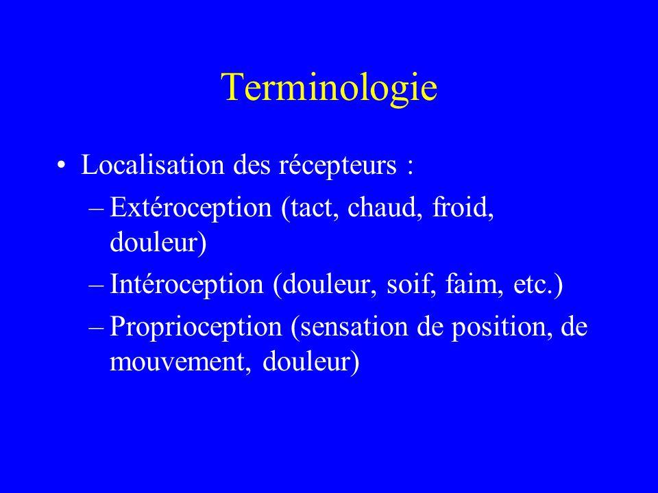 Terminologie Localisation des récepteurs :