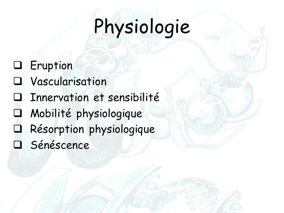 Physiologie Eruption Vascularisation Innervation et sensibilité