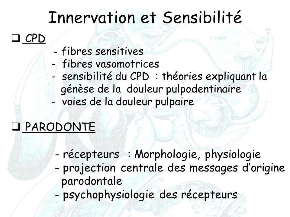 Innervation et Sensibilité
