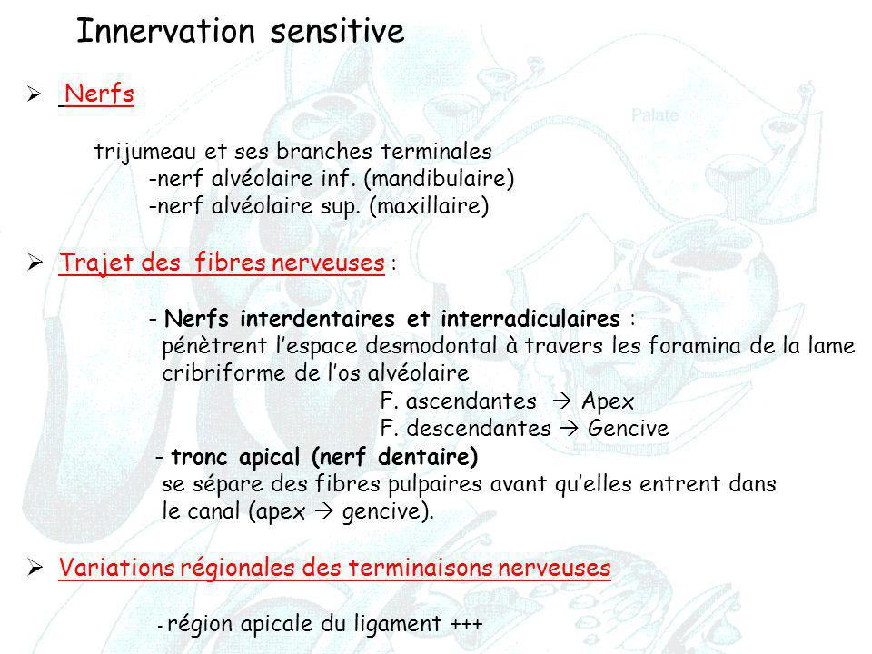 Innervation sensitive