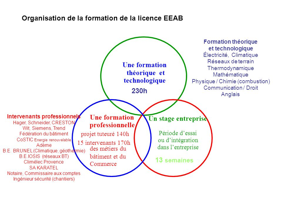 Organisation de la formation de la licence EEAB