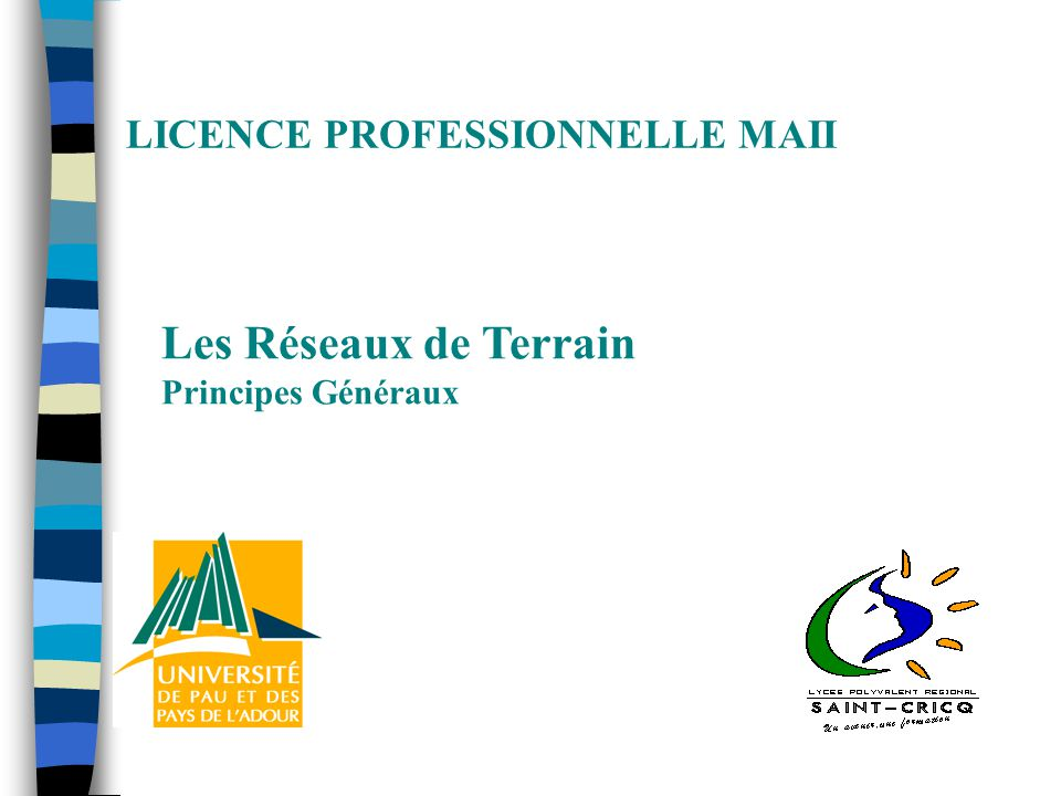 LICENCE PROFESSIONNELLE MAII