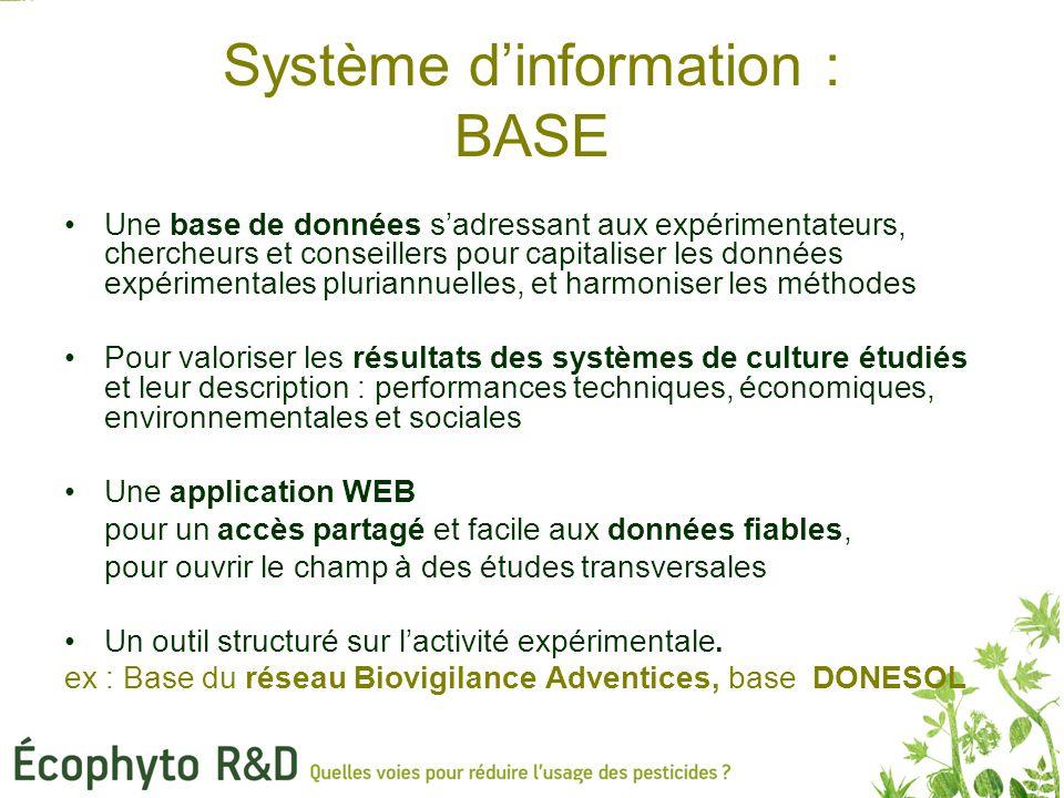 Système d'information : BASE