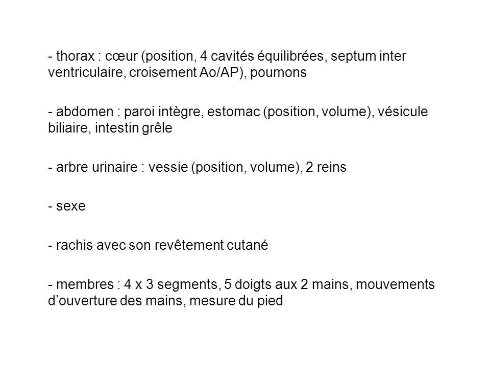 - thorax : cœur (position, 4 cavités équilibrées, septum inter ventriculaire, croisement Ao/AP), poumons
