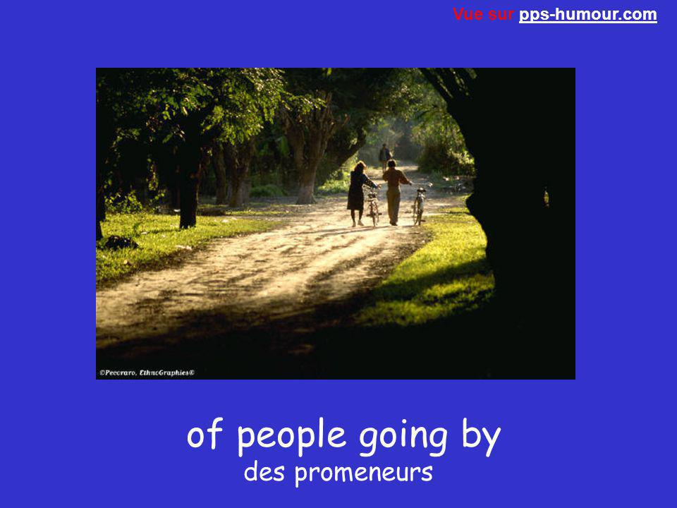 of people going by des promeneurs