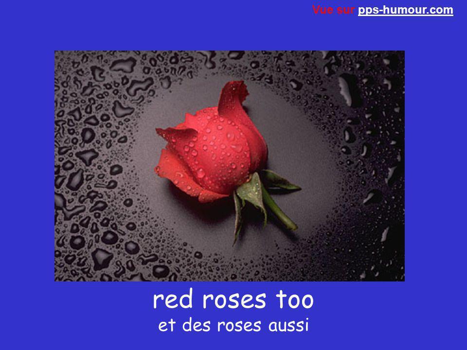 red roses too et des roses aussi