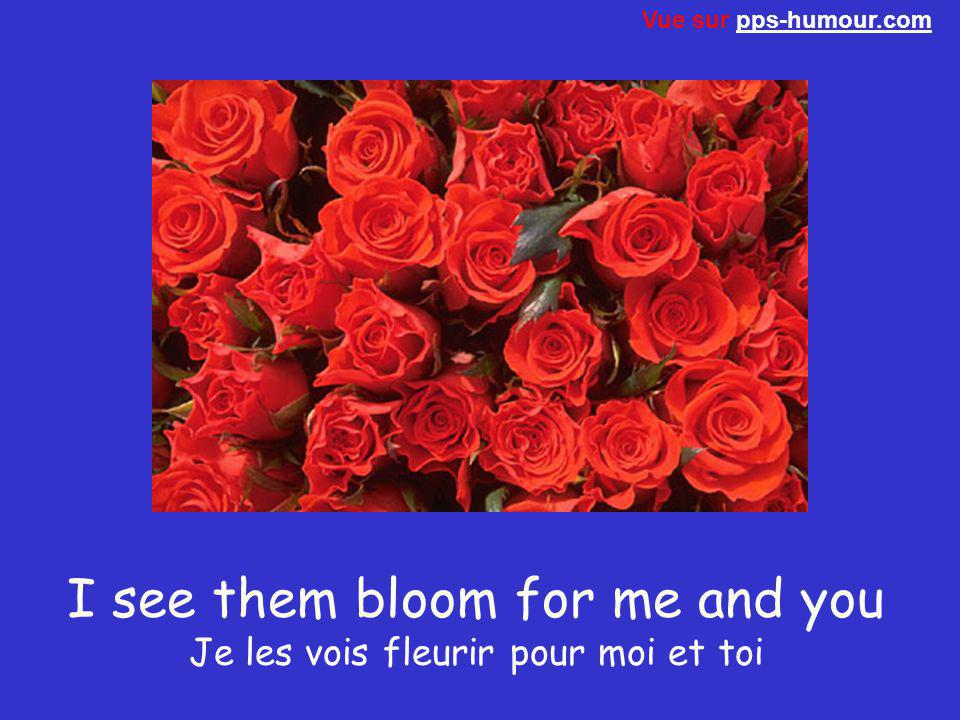 I see them bloom for me and you Je les vois fleurir pour moi et toi