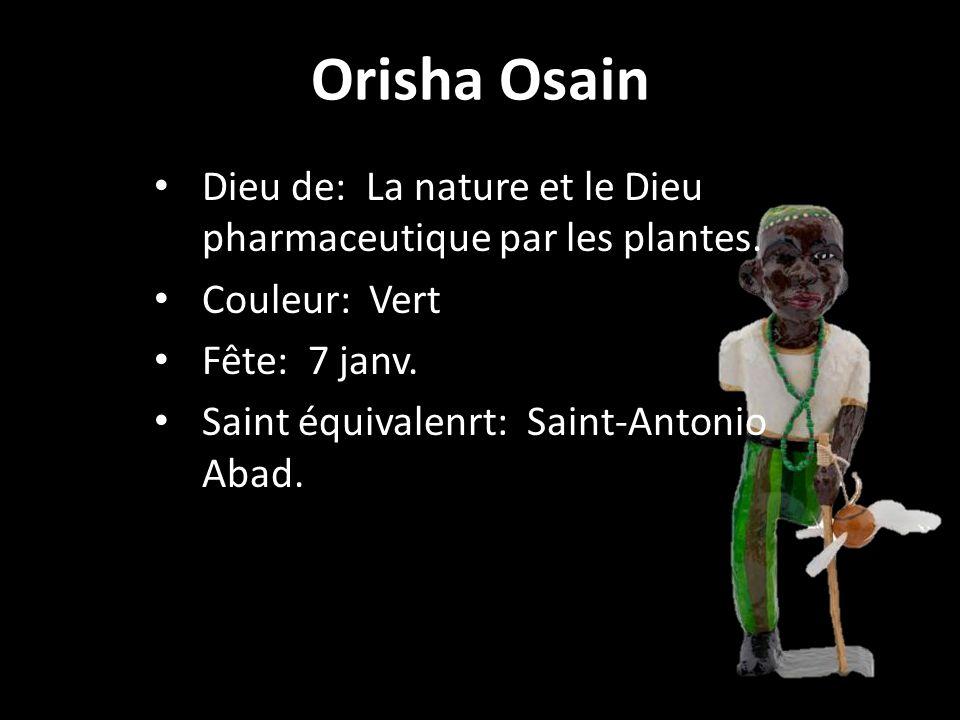 Orisha Osain Dieu de: La nature et le Dieu pharmaceutique par les plantes. Couleur: Vert. Fête: 7 janv.